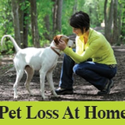 Pet Loss At Home